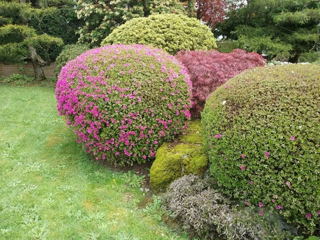 IT IS VERY GOOD LANDSCAPING