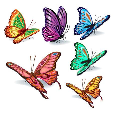 Set of colorful realistic isolated butterflies
