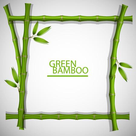 bamboe frame vector