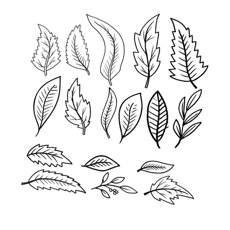 leaves seamless pattern black and white