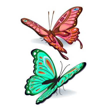 six objects: Set of realistic colorful vector butterflies for design