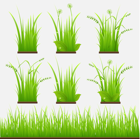 grass vector: grass vector illustration