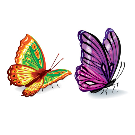 Set of realistic colorful butterflies for design