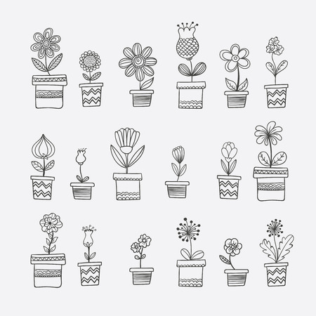 ollection of floral sketches