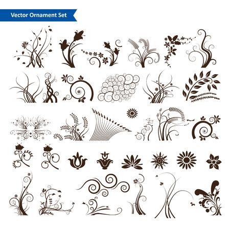 scroll border: Floral design element