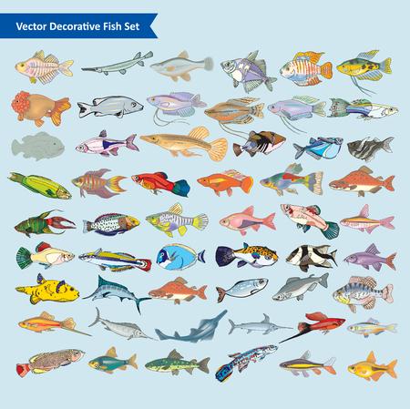 Cartoon Fish vector set