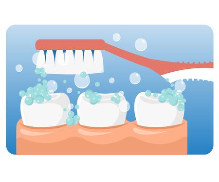 ブラッシング歯のベクトルをベクトルします。