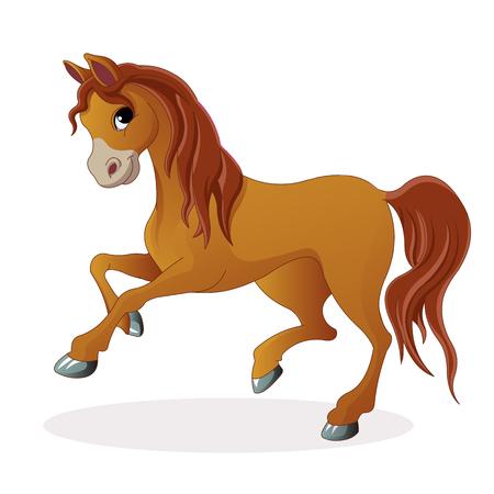 pony: Beautiful Pony Horse Illustration