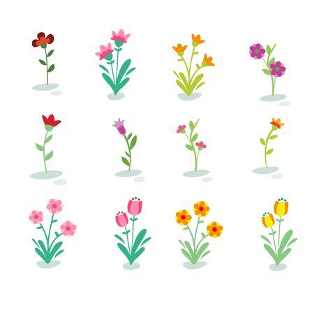 Flowers Vector Set Illustration