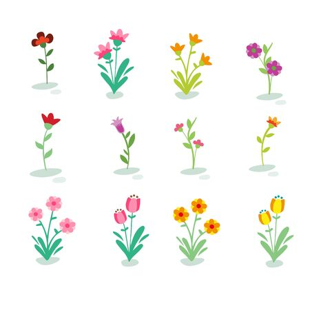 garden flowers: Flowers Vector Set Illustration