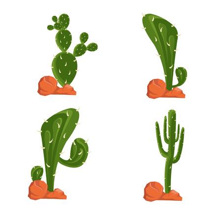 cactus vector illustration