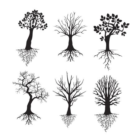 ●ツリーセットのベクトルシルエット。白い背景に隔離されています。
