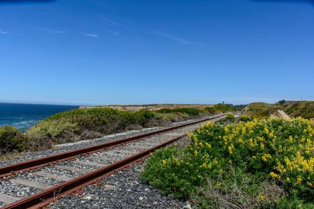 complicated journey: Railroad Track Beside Beach with Flower, at California Santa Cruz