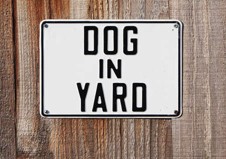 dog in yard sign mounted on fence