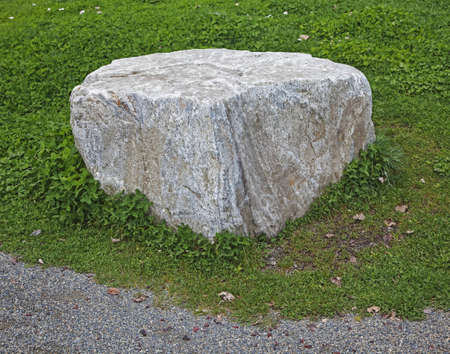 rock on lawn next to pathway