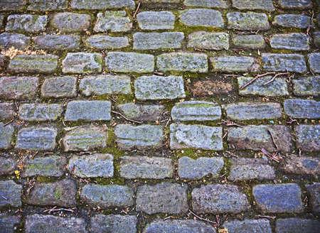 overgrown old cobblestone street Stock Photo