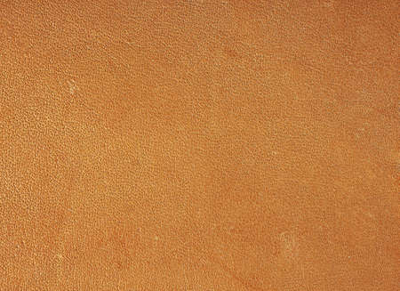 macro detail of leather strap