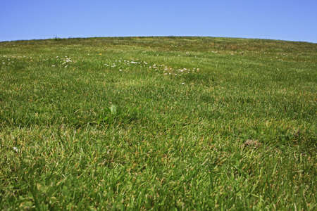 Manicured lawn of hill from below