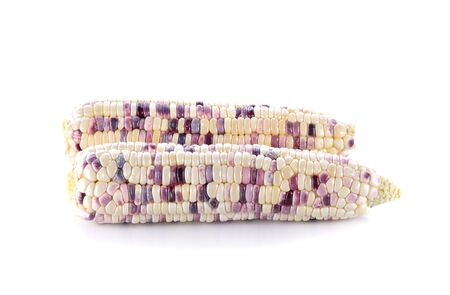 white background: corns on white background