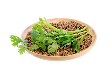 Coriander and coriander seed in wooden plate on white background