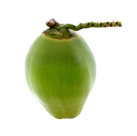 young coconut isolated on white background