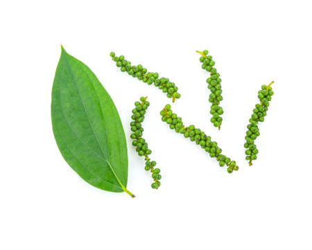 Fresh green peppercorns with leaf isolated on a white background. 免版税图像