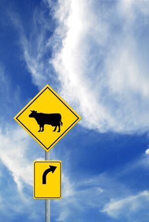Cow and Direction sign on sky photo