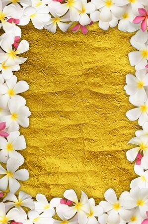 White Flower on gold texture Stock Photo - 9940330