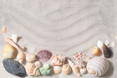 sea shells with sand as background Reklamní fotografie