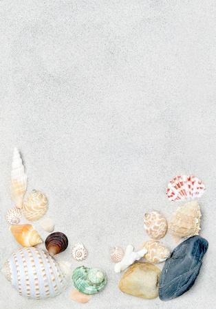 배경으로 모래와 바다 포탄