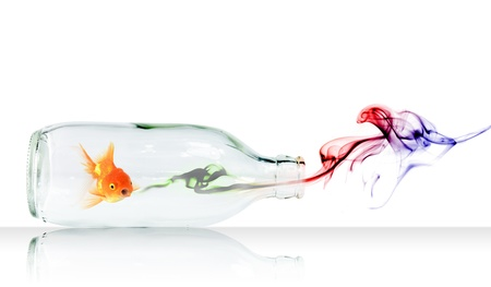 Gold fish in Glass bottle with concept smoke photo