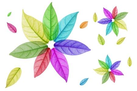 흰색 배경에 다채로운 잎의 디자인