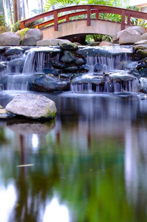 koi pond: Waterfall in the gaden