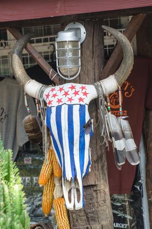 Buffalo skull decoration  photo