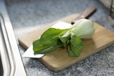 Chinese Vegetable cabbage in kitchen  photo