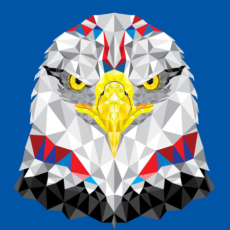 American Eagle with geometric pattern vector Vector