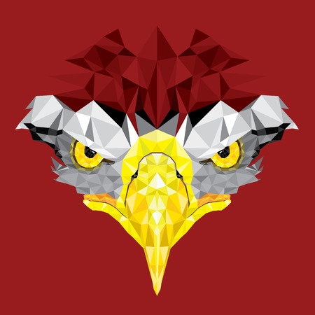 tattoo face: Eyes of Eagle with geometric pattern vector