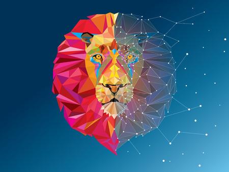 星の行ベクトルと幾何学模様の獅子頭