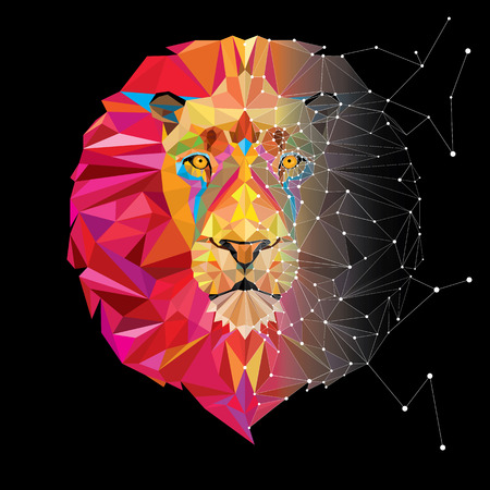 Lion head in geometric pattern with star line vector Vector