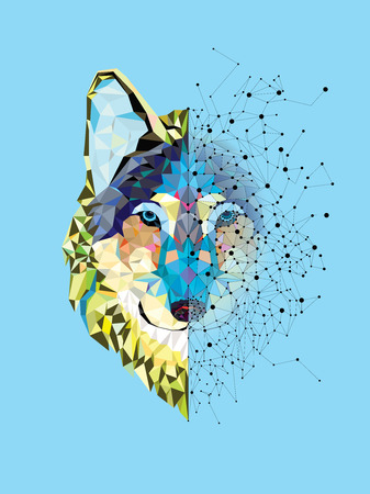 wolf head: Wolf  head in geometric pattern with star line vector