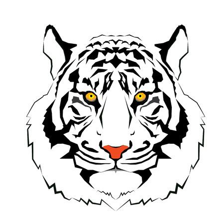 Tiger head - vector illustratie