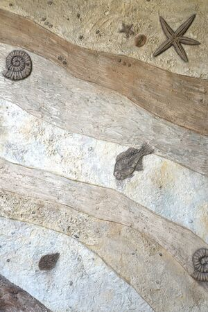fossil: Fossil wall texture background Stock Photo