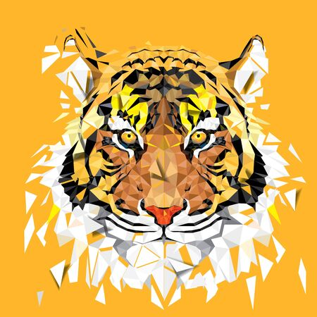 Low polygon Tiger geometric pattern - Vector illustration Stock Photo