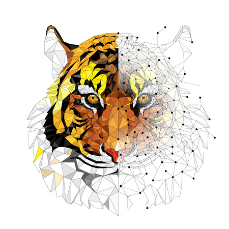 Low polygon Tiger geometric pattern - Vector illustration Stock fotó