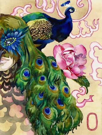 plumas de pavo real: Rey de un pavo real