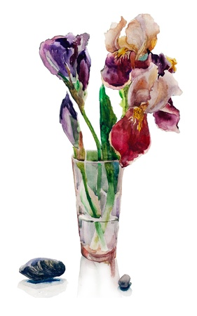 bouquet of irises watercolor photo