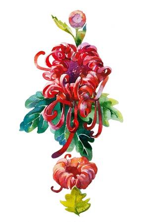 red chrysanthemum pattern 免版税图像