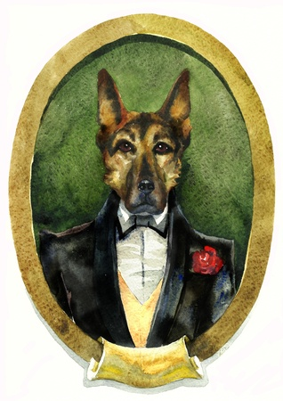 sheep dog portret watercolor