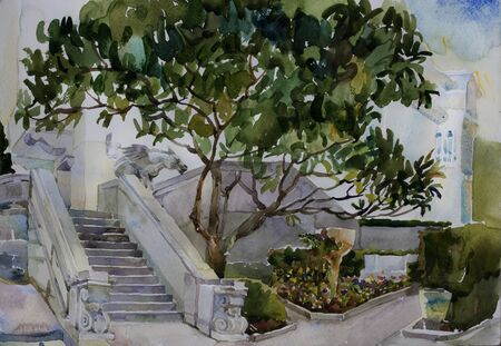 magnolia tree: great magnolia tree and a stairs with chimera in Livadia watercolor