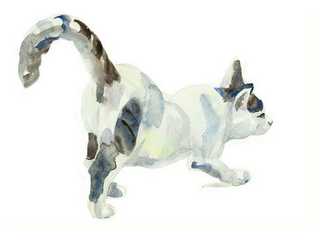 watercolor painting cat stretching on surface photo